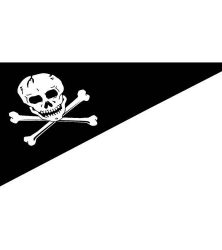 Pirate flag for boats
