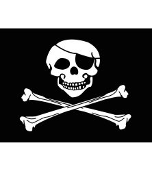 Pirate Motorcycle Flag